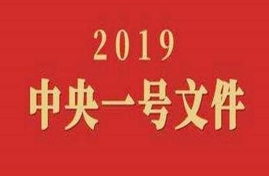 """2019年中央一号文件解读  中央一号文件""""三农""""工作重大方针"""